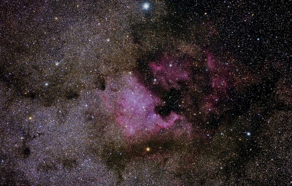 Picture stars, Nebula, North America, in the constellation Swan