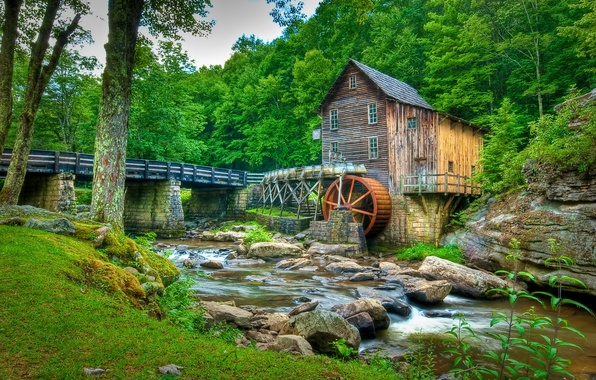 Picture forest, trees, bridge, stream, stones, USA, Babcock State Park, water mill