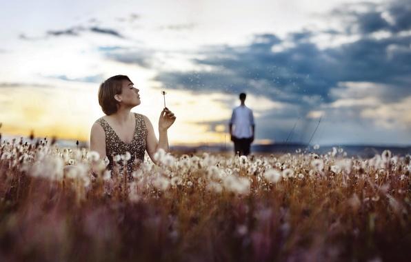 Picture field, girl, mood, dandelions