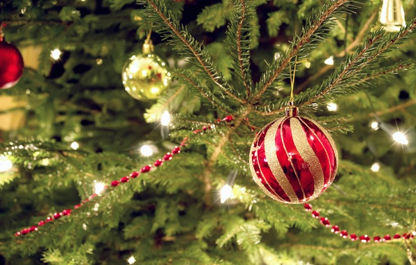 Picture decoration, red, lights, holiday, spruce, ball, deviantart, bo0xVn