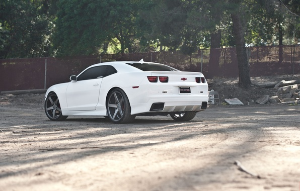 Picture white, trees, black, the fence, white, wheels, Chevrolet, drives, black, camaro, chevrolet, Camaro