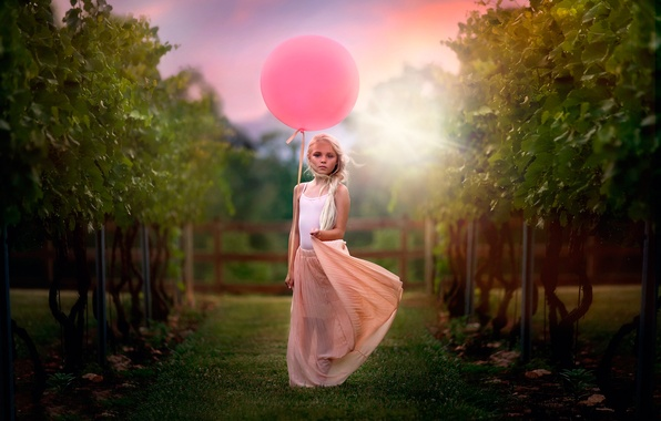 Picture ball, girl, child photography, Vineyard