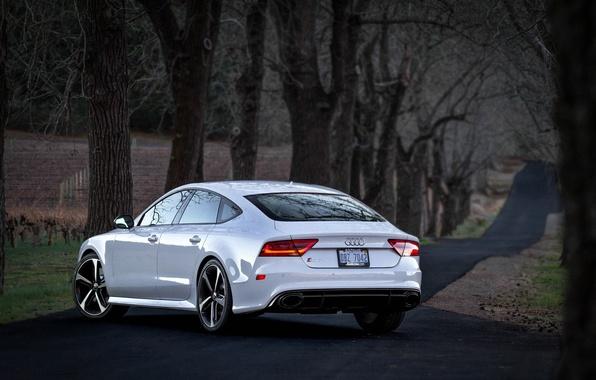 Picture Audi, Audi, white, white, RS7