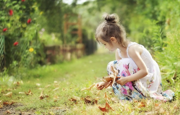 Picture leaves, nature, girl