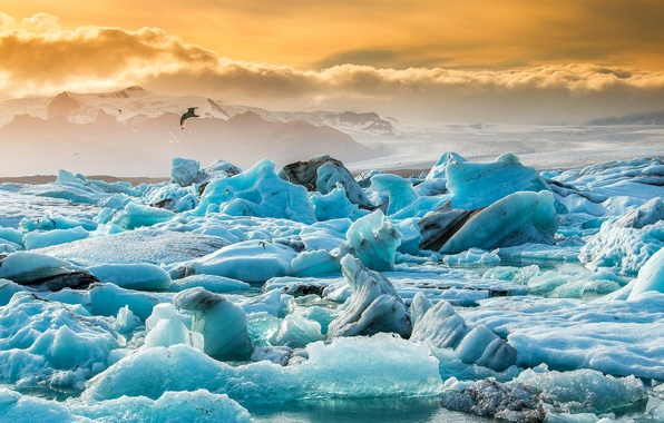 Picture ice, the sky, snow, sunset, nature, lake, bird, ice, Iceland, Iceland, Jökulsárlón, the glacial lagoon, …