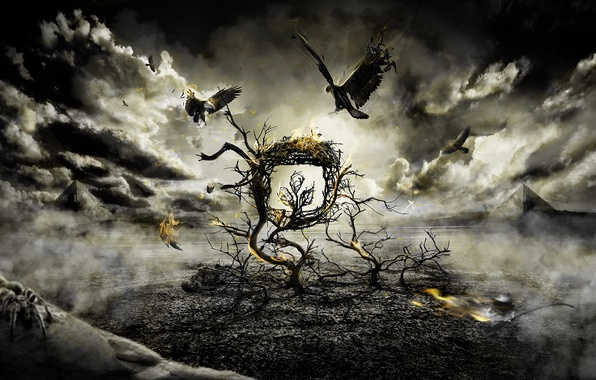 Picture birds, clouds, tree, fire, the darkness, fight, spider, Gothic
