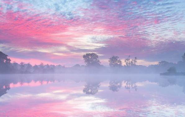 Picture autumn, fog, lake, morning, Netherlands, September