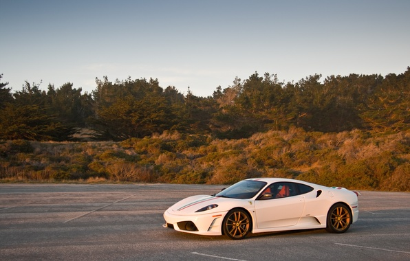 Picture white, the sky, grass, trees, shadow, white, ferrari, Ferrari, side view, F430, the Scuderia, f430 …