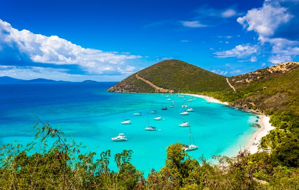 Picture beach, summer, mountains, the ocean, island, yachts, jungle