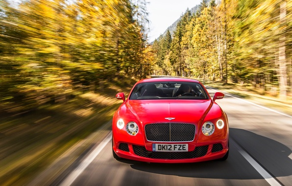 Picture Red, Auto, Bentley, Continental, Forest, Machine, The hood, Lights, The front, In Motion