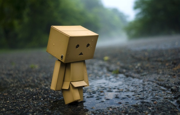 Picture asphalt, rain, mood, box, Wallpaper, puddle, man, wallpaper, danbo, danboard
