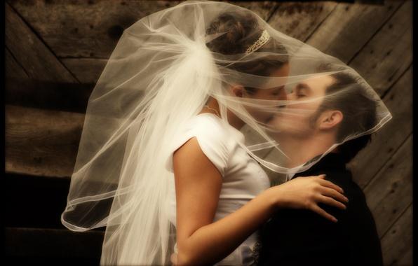 Picture Kiss, The bride, Wedding, Veil
