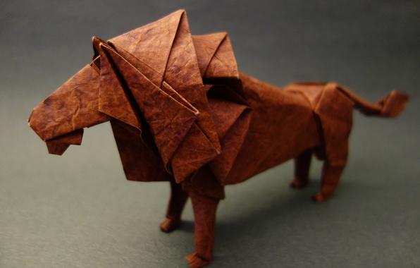 Picture paper, predator, Leo, origami