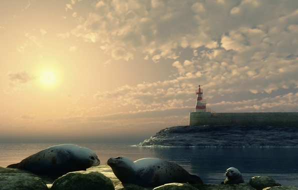 Picture animals, landscape, lighthouse