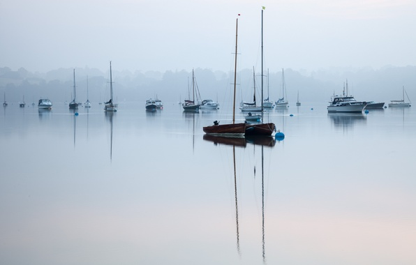 Picture fog, lake, silence, boats, morning, peace