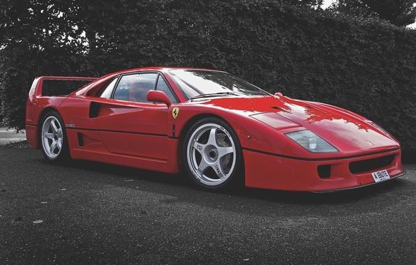 Picture Red, Machine, Ferrari, F40, Car, F 40