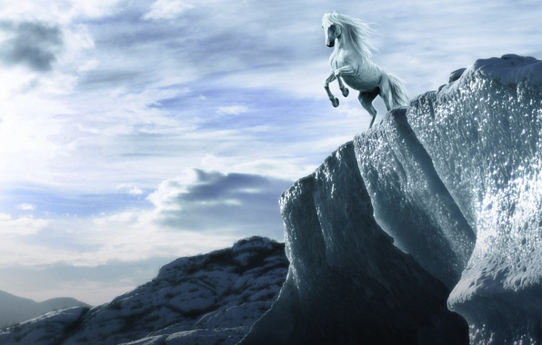 Picture the sky, look, clouds, rock, horse, height, art, mane, white, hooves