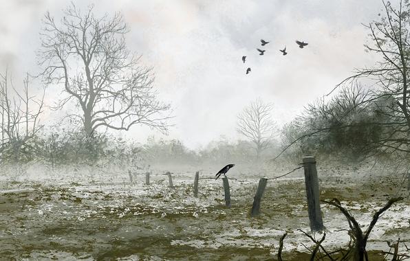 Picture winter, snow, birds, nature, art