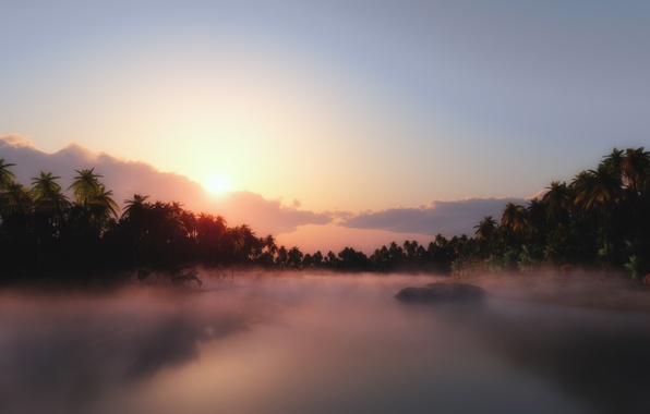 Picture tropics, river, palm trees, jungle, haze
