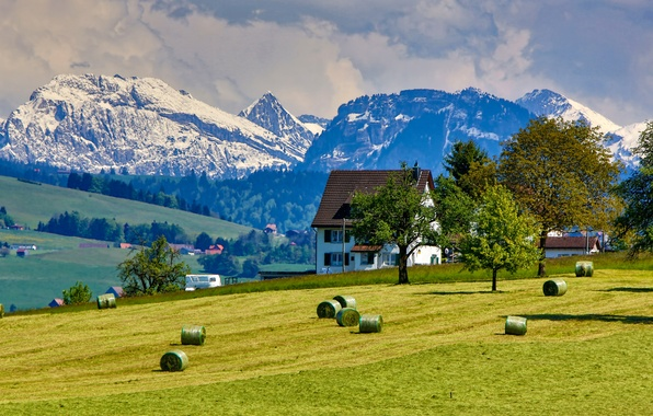 Picture field, the sky, grass, clouds, snow, trees, mountains, house, cottage