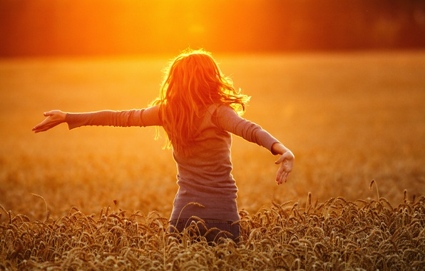 Picture wheat, field, landscape, sunset, nature, Girl