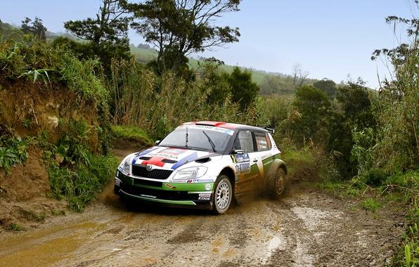 Picture Auto, Sport, Race, Dirt, WRC, Rally, Rally, The front, Skoda, Fabia, Fabia, Skoda