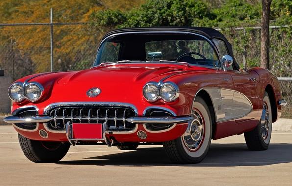 Picture red, Corvette, Chevrolet, Chevrolet, the front, 1959, Corvette