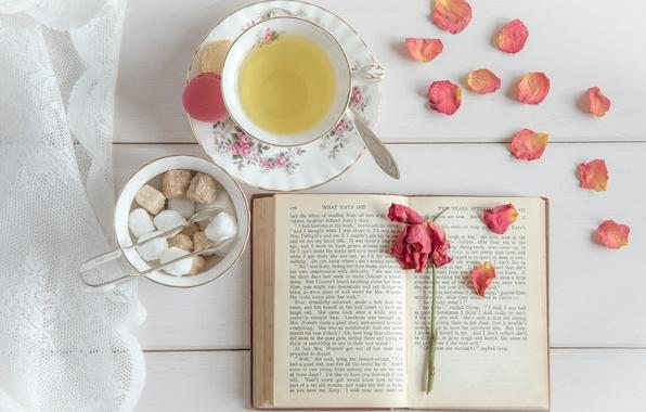 Picture tea, rose, petals, sugar, book