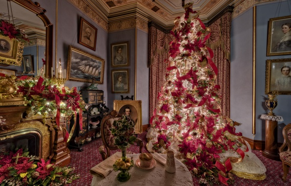 Picture room, holiday, tree