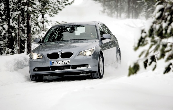 Picture Winter, Trees, Forest, BMW