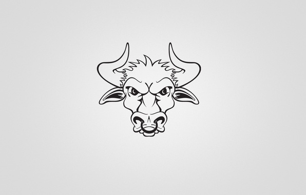 Picture minimalism, horns, bull, bull