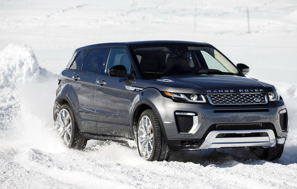 Picture car, SUV, Land Rover, Range Rover, car, the front, Evoque, suv, Autobiography