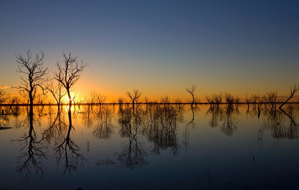Picture the sky, water, trees, sunset, reflection, spring, the evening, spill, flood