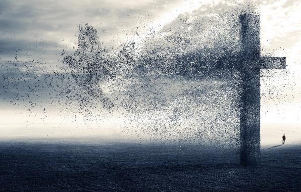 Picture fragments, bird, people, cross, destruction, Heath