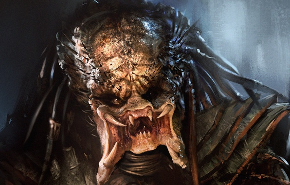 Wallpaper predator, Predator, fangs, art, alien, face ...