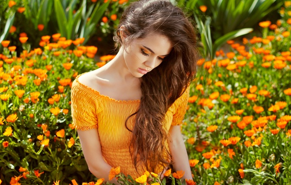Picture girl, flowers, beauty, long hair