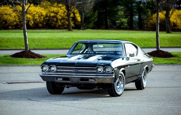 Picture Chevrolet, 1969, Chevrolet, Chevelle, COPO, Chevelle