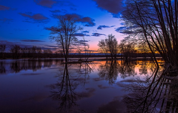 Picture the sky, clouds, trees, sunset, orange, lake, reflection, the evening, Canada, Ontario, blue