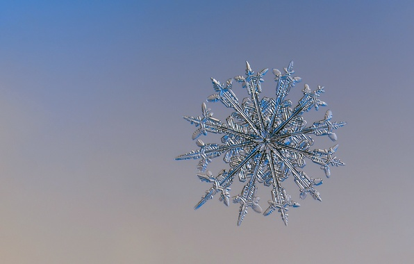 Picture BACKGROUND, ICE, WINTER, MACRO, PATTERN, SNOWFLAKE
