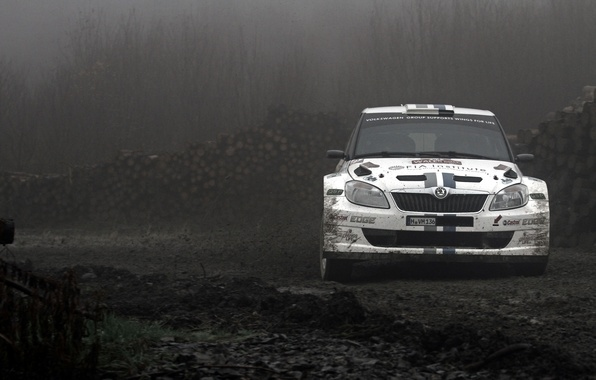Picture Skid, Dirt, Rally, Rally, The front, Skoda, Fabia, Fabia
