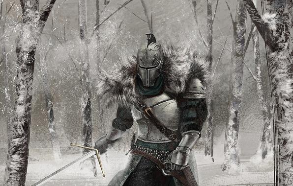 Picture winter, forest, snow, sword, armor, art, knight, Dark Souls 2, Dark Souls II