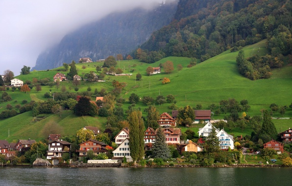 Picture forest, trees, mountains, fog, lake, shore, field, home, Switzerland, Lucerne
