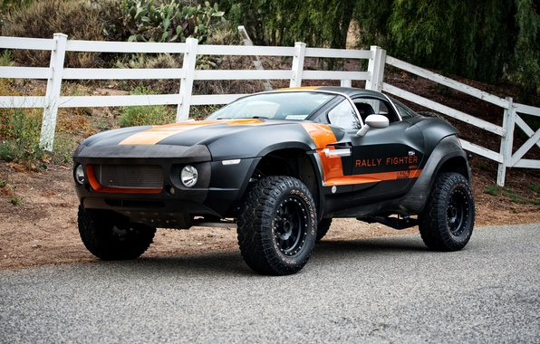Picture 2010, Rally Fighter, Local Motors