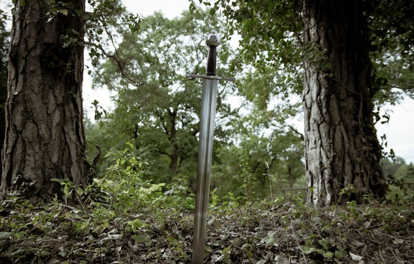 Picture nature, weapons, steel, sword