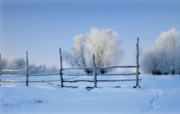 Picture winter, field, snow, the fence, morning