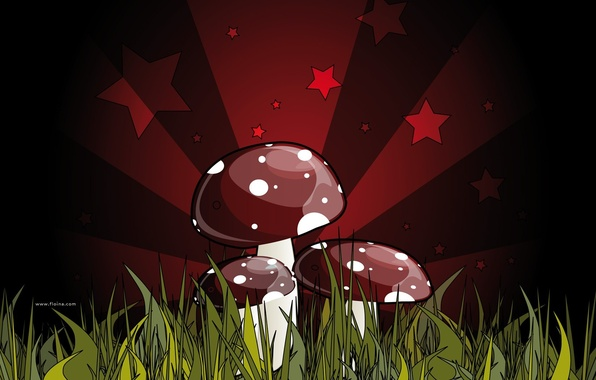 Picture red, green, figure, fatal, mushrooms, grebe. poisonous, mushroom, dark