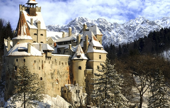Picture winter, snow, mountains, the city, photo, castle, spruce, Romania, Bran Castle Transylvania
