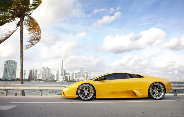 Picture road, the sky, clouds, Palma, the wind, Lamborghini, drives, the yolk, Miami