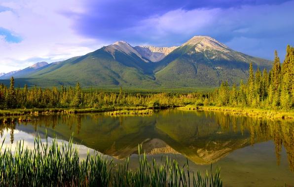 Picture mountains, lake, reflection, Canada, panorama, Albert, Banff National Park, Alberta, Canada, Banff, Banff national Park, …