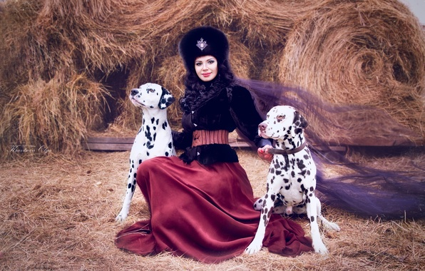 Picture dogs, girl, hat, skirt, brunette, hay, outfit, fur, veil, Dalmatians, lady